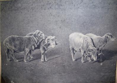 Mouton-Frolant